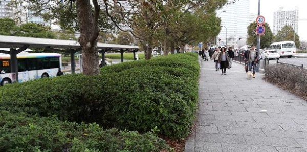 桜木町駅前、バス停横の道