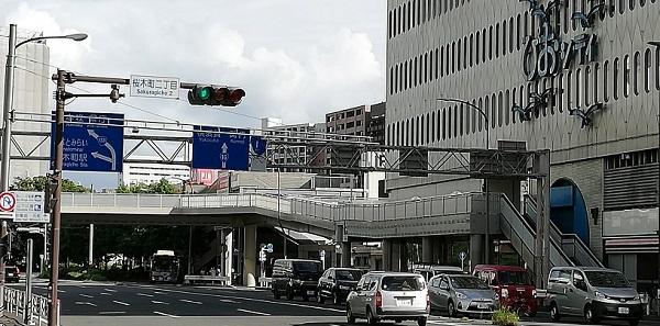 桜木町2丁目交差点前(ぴおシティ16号線前)